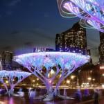 Город Бостон обзаведется особыми деревьями