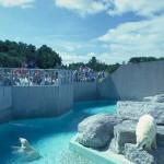 Самый большой зоопарк в мире