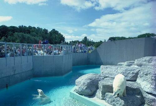 Самый большой зоопарк