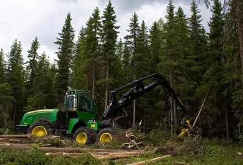 работа лесной