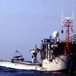 RP FLIP — один из самых необычных кораблей в мире