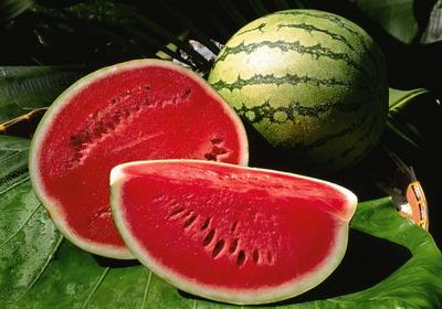 Самая большая ягода в мире