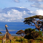 Килиманджаро — самый высокий вулкан Африки