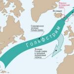 Самое мощное течение мирового океана