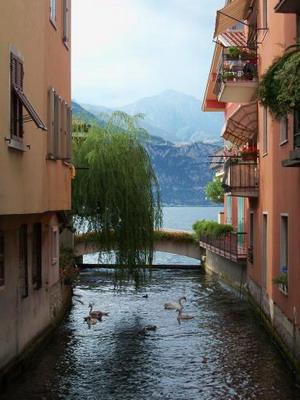 Ариль (Италия)