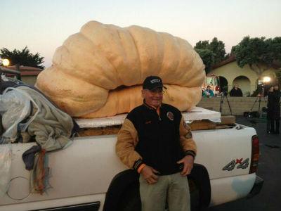 Гарри Миллер и его 900 килограммовая тыква