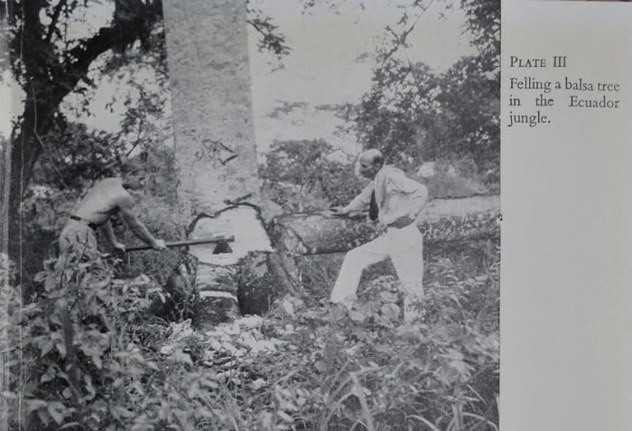 Вырубка бальзового дерева (Эквадор, 1950 год)