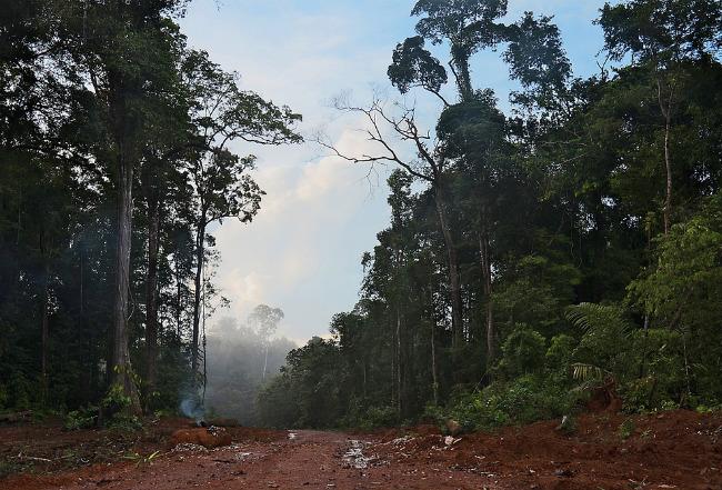 Традиционные места обитания в Амазонии