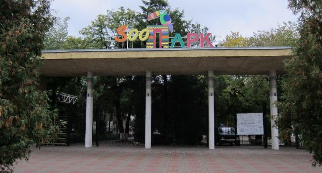 rostovskiy-zoopark1