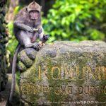 «Лес Обезьян» — самое удивительное место на райском острове Бали