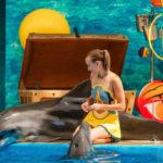 Анапские дельфинарии